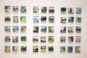 From the Domestic Landscpae Series: Growing the Home, 2010-2011